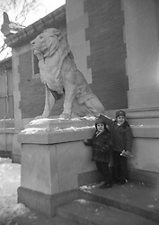 Two boys at the Bronx Zoo in New York