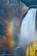 Lower Falls in the Grand Canyon of the Yellowstone River in Yellowstone National Park in Wyoming