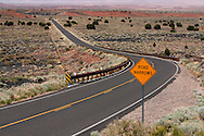 Winding road with the Painted Desert in the distance - AZ
