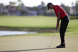 February 25, 2018 - Palm Beach Gardens, Florida, U.S. - Tiger Woods putts on the 18th hole during the final round of the 2018 Honda Classic at PGA National Resort and Spa in Palm Beach Gardens, Fla., on Sunday, February 25, 2018. (Credit Image: © Andres Leiva/The Palm Beach Post via ZUMA Wire)