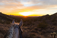 Horseback riding in Arizona with Cave Creek Trail Rides in the Tonto National Forest<br /> <br /> ©2018, Sean Phillips<br /> http://www.RiverwoodPhotography.com