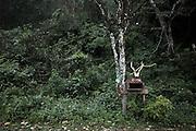 NOUVELLE CALEDONIE, HIENGHENE, Tiendanite - Aout 2013