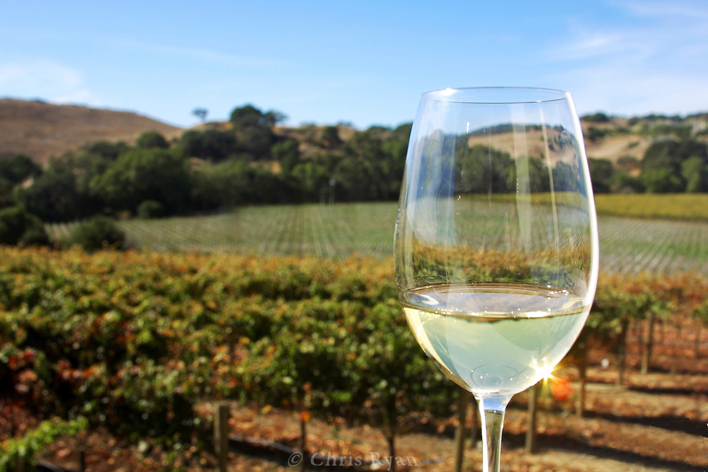 Wine glass over Napa Valley Vineyard