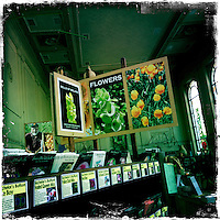 2013 May 13:  Petaluma Seed Bank in Northern California.