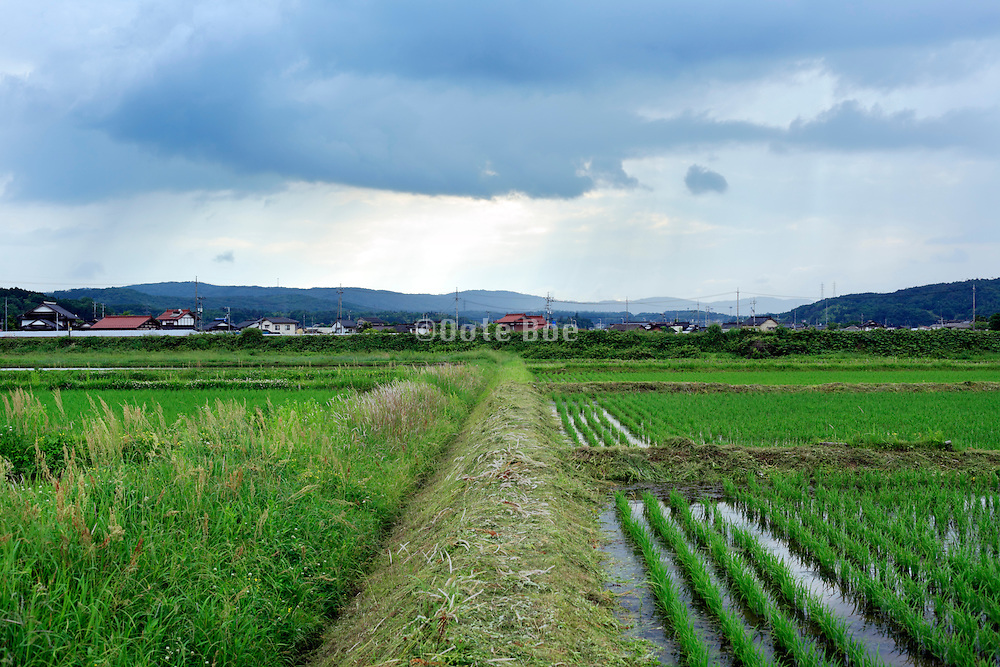 Japanese rural landscape in the Hiroshima prefecture