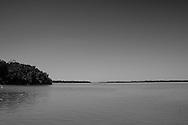 Celestun Estuary, Yucatan Peninsula, Mexico