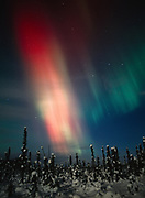 Red and green aurora during geomagnetic storm on the night of October 27-28, 2001, Upper Susitna Valley, Alaska.