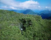 Waterfall, Alakai Swamp, Kauai, Hawaii<br />