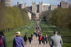 © Licensed to London News Pictures.  11/04/2021. Windsor,UK. Members of the public walk through The Long Walk outside Windsor Castle. On Friday the 9th of April Buckingham Palace announced that Prince Philip The Duke of Edinburgh passed away in the morning at Windsor Castle . Photo credit: Marcin Nowak/LNP