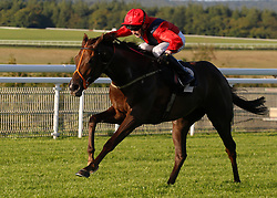 She Believes ridden by David Egan wins THe Chichester Observer Nursery Handicap Stakes Race run at Goodwood Racecourse, Chicester.