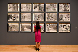 "© Licensed to London News Pictures. 06/02/2017. London, UK. A staff member views charcoal drawings called ""The Arrival of Spring in 2013 (twenty thirteen)"" at the preview of the world's most extensive retrospective of the work of David Hockney at the Tate Britain, which will be on display 9 February to 29 May 2017. Photo credit : Stephen Chung/LNP"