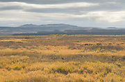 The wetlands of Malheur National Wildlife Refuge, with the Steens mountains in the backgroun bask in the autumn glow of a late afteroon sun.