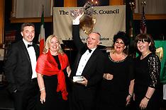 US Ireland Council 2017