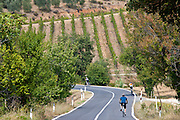 Cyclists on touring holiday near Montalcino, Val D'Orcia, Tuscany, Italy