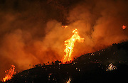 Flames flare up from a wildfire near Placenta Caynon Road in Santa Clarita, Calif., Sunday, July 24, 2016.(AP Photo/Ringo H.W. Chiu)