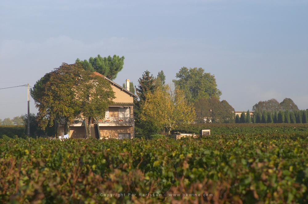 Vineyard. And house, Chateau Le Pin. Pomerol, Bordeaux, France