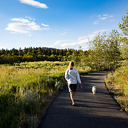 Cyclistss and walkers enjoy the Mammoth Lakes Town Loop