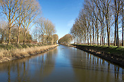 Trees along the canals near Damme, just outside Bruges, reflected in the still water