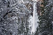 Bridalveil Fall in winter, Yosemite Valley, Yosemite National Park, California USA