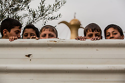March 30, 2017 - Mosul, Nineveh Province, Iraq - A group of boys peer over the fence of the zoo during the rescue. A lion and a bear, just rescued from Mosul's zoo, are prepared to fly to safety outside Iraq and into Erbil, Kurdistan. The two animals nearly starved to death in their cages while battle raged around them in the Iraqi city earlier this year. Several other animals at the zoo died from neglect but these two were finally rescued by the animal charity Four Paws. (Credit Image: © Gabriel Romero via ZUMA Wire)