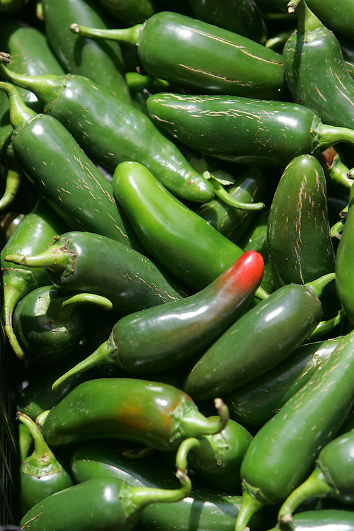 McAllen Produce Terminal Market, 7/28/08.Jalapeños from a vendor at the McAllen Produce Terminal Market sit in the back of a customer's pickup truck on Monday, July 28, 2008.