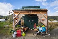 Vegetables for sale at The Ocenside Farms in Homer, Alaska, USA.<br /> <br /> Photographer: Christina Sjögren<br /> <br /> Copyright 2019, All Rights Reserved