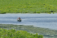 Mamakating, New York - Spring scenes at the Bashakill Wildlife Management Area in Sullivan County on June 3, 2012.