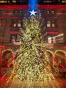 Christmas Tree at Lotte Palace Hotel, NYC