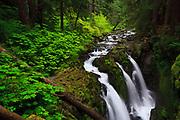 Sol Duc Falls, Olympic National Park. Washington.