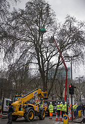 © Licensed to London News Pictures. 28/01/2021. London, UK. Bailiffs try to reach HS2 Rebellion protestors who are camped in a tree above Euston Square Gardens. Protestors are resisting a police operation to remove them for a second day. It is reported the protesters have built a 100ft tunnel under the gardens. Photo credit: Peter Macdiarmid/LNP