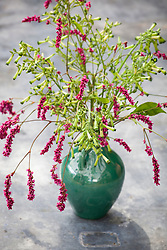 Persicaria orientalis in green Dalloway vase. Prince's feather
