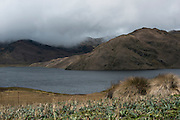 Micacocha Lagoon<br /> fed by Antisana Volcano snow melt<br /> 5,753 meters high or 18,874 ft<br /> Avenue of the Volcanoes<br /> Cordillera Real, Andes<br /> Condor Bioreserve as part of the Antisana Ecological Reserve<br /> ECUADOR, South America<br /> Last erupted between 1801 and 1802