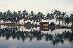 Backwaters of Kerala near Aleppey; India; with huts; palm trees; and reflections,