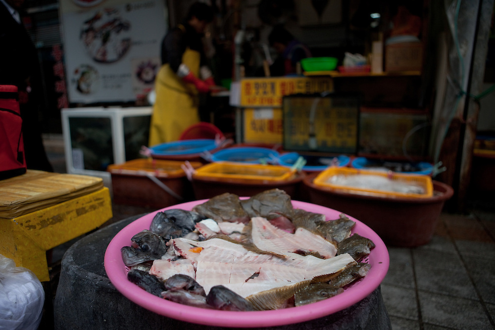 Jagalchi Fish Market, Busan, South Korea, Republic of Korea, KOR, 14 February 2010.