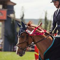 CLASS #551 FIORINO 1.20m Derby