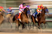 Breeders' Cup Classic (Race 11) (Dirt) <br /> November 3, 2018: West Coast and Mckinzie gallop past the wire in the the Breeders' Cup Classic on Breeders' Cup World Championship Saturday at Churchill Downs on November 3, 2018 in Louisville, Kentucky.