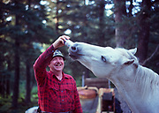 "Bob Haeg sharing a Hamms with ""Tasha', a beer-loving horse, Chinitna Bay, Cook Inlet Coast of Lake Clark National Park, Alaska."