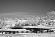 Rural Kentucky horse pasture land.  Infrared (IR) photograph by fine art photographer Michael Kloth. Black and white infrared photographs