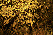 Drogarati cave on Cephalonia Island illuminated in orange, Greece