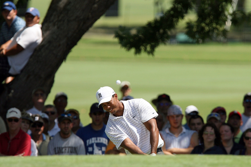 09 August 2007: Tiger Woods hits out of the green side bunker on the 4th hole during the first round of the 89th PGA Championship at Southern Hills Country Club in Tulsa, OK.