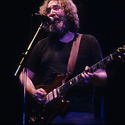 Grateful Dead play McAurthur Ct., UoO, Eugene, Oregon on 8/16/1981.