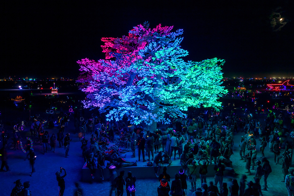"""Tree of Ténéré by: Alexander Green, Zachary Smith, and Patrick Deegan from: San Francisco, CA year: 2017<br /> <br /> An enormous lifelike tree, Ténéré offers shade to wanderers, adventure to climbers, and transcendent community to those gathered beneath its 15,000 LED leaves. Like its namesake – considered the most isolated tree on Earth until its destruction in 1973 – Ténéré serves as a place of refuge and ritual for desert wanderers. Standing more than three stories tall, it beckons to passersby with the promise of shade and adventure, conjuring spontaneous communities out of desert sand and sun. At night, LEDs hidden within each leaf begin to glow. The 15,000 leaves form a dome-shaped """"canvas of light"""" that towers over the playa, spanning more than a thousand square feet. Participants lying under the tree experience sublime light shows set to ambient music or live performance. And they directly influence the canopy lights through their sounds and biorhythms, creating moments of transcendent oneness with each other and with nature. URL: https://www.treeoftenere.com Contact: contact.tenere@gmail.com"""
