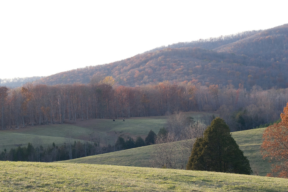 Autumn rural landscape with fall foliage, outside Charlottesville, Virginia.