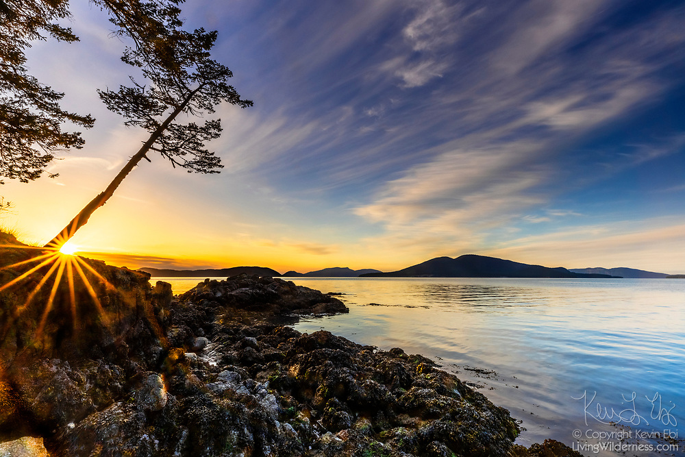 The setting sun disappears behind a tilted tree on a rocky bluff bordering Sunset Beach on Fidalgo Island in Anacortes, Washington. Cypress Island, one of the San Juan Islands, is visible in the background at right across Rosario Strait.