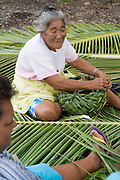 Coconut palm frond weaving, Fakarava, Tuamotu Islands, French Polynesia, (Editorial use only)<br />
