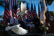 Fourteen doves are released are released in commemoration of the 14th anniversary of 9/11 during the Bonita Springs Patriots Day Service in Riverside Park on Friday, Sept. 11, 2015, in Bonita Springs. (David Albers/Naples Daily News)