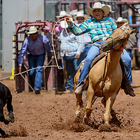 Breakaway roper Savannah Begay lassos her calf for a 3.08 second run during the Gallup Intertribal Indian Ceremonial rodeo at Red Rock Park in Gallup Saturday.