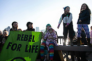 Thousands of Extinction Rebellion activists took over 5 bridges in Central London and blocked them for the day, November 17 2018, Central London, United Kingdom. Lambeth Bridge; children and their mothers rebel and cheer on the crownd sitting in the road. Around 11am people on all bridges sat down in the road and blocked traffic from coming through and stayed till late afternoon. The actvists believe that the government is not doing enough to avoid catastrophic climate change and they demand the government take radical action to save future generations and the planet. Many are willing to be arrested peacefully protesting and up to 80 were arrested on the day. Extinction Rebellion is a grass root climate change group started in 2018 and has gained a huge following of people commited to peaceful protests and who ready to be arrested. Their major concern is that the world is facing catastropohic climate change and they want the British government to act now to save future generations.