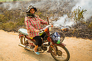 "09 APRIL 2013 - KHUNTAN, LAMPHUN, THAILAND:  A woman rides her motorcycle past a grassfire buring out weeds in Khuntan, Lamphun province, Thailand.  The ""burning season,"" which roughly goes from late February to late April, is when farmers in northern Thailand burn the dead grass and last year's stubble out of their fields. The burning creates clouds of smoke that causes breathing problems, reduces visibility and contributes to global warming. The Thai government has banned the burning and is making an effort to control it, but the farmers think it replenishes their soil (they use the ash as fertilizer) and it's cheaper than ploughing the weeds under.     PHOTO BY JACK KURTZ"
