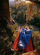 Andy and Connie Taylor tucked 90 feet up in a redwood near their home in Elk.